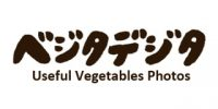 supporting-member-vegetadigita