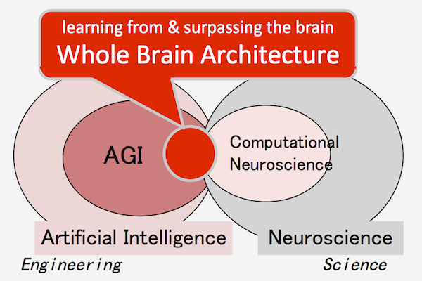 Whole Brain Architecture